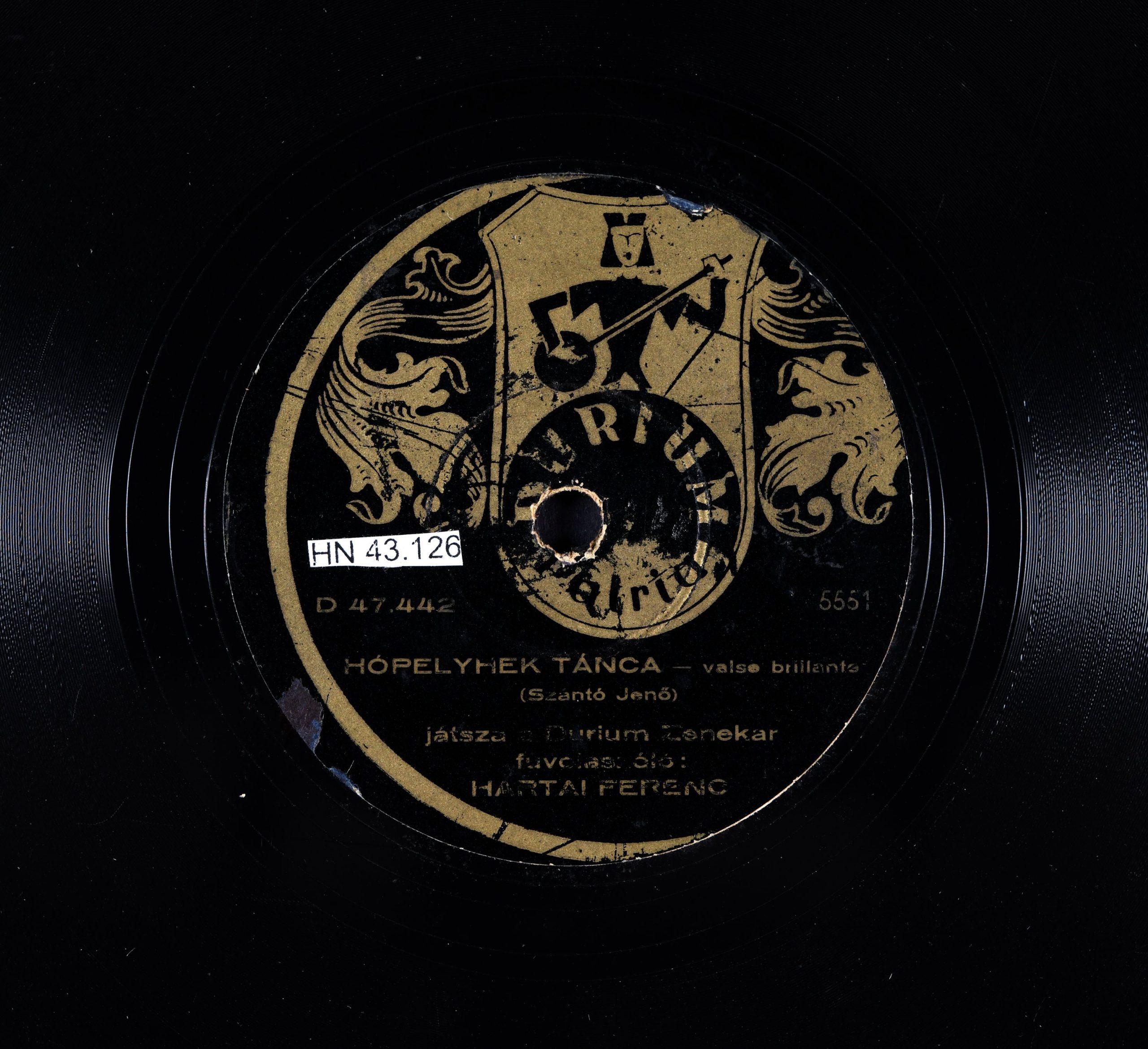 A lemez - katt a képre